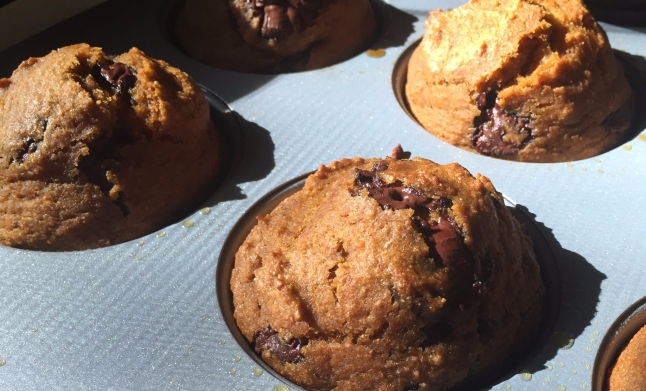 Chocolate Chip Pumpkin Pie Muffins 2 -KintheKitchen