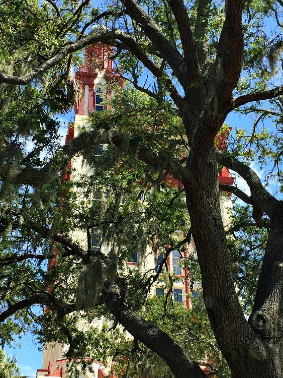 KintheKitchen St. Augustine 8