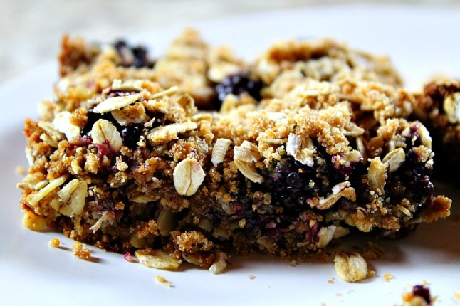Blackberry Crumble Breakfast Oat Bars KintheKitchen