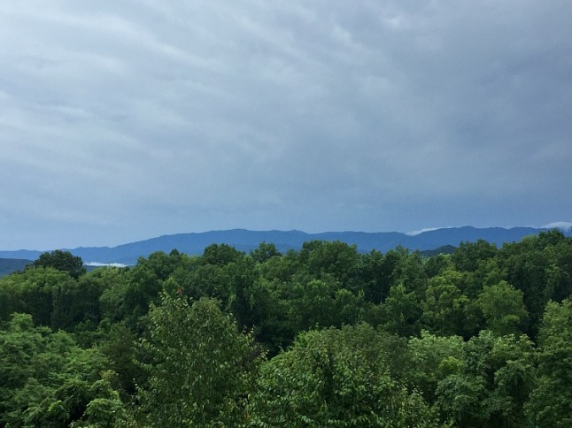 Scenes from the Smokies - KintheKitchen (2)